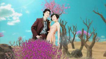 پروژه اماده عروسی 3