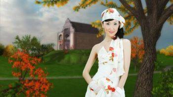 پروژه اماده عروسی با استفاده از تصاویر لایه باز