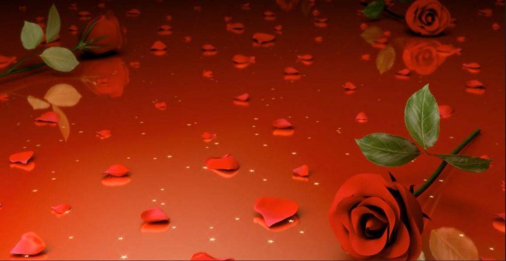 فوتیج گل