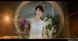 پروژه اماده Wedding Album