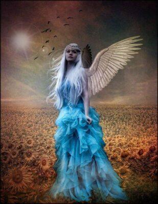 لایه باز بال فرشته