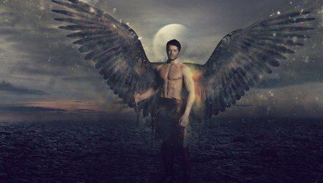 دانلود مجموعه تصاویر لایه باز بال فرشته