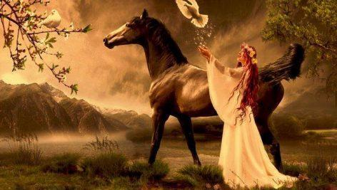 لایه باز اسب