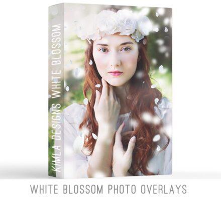 مجموعه شکوفه های سفید با قابلیت همپوشانی برای فتوشاپ