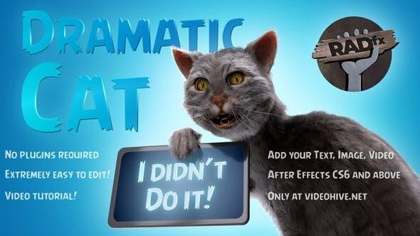 پروژه اماده افتر افکت نمایش گربه خنده دار Funny Dramatic Cat