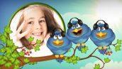 preview 8 172x97 - پروژه اماده کودکانه کارتونی + موسیقی Birds Life