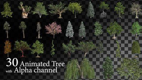 tree 472x267 - دانلود فوتیج موشن گرافیک متحرک درخت Animated Tree