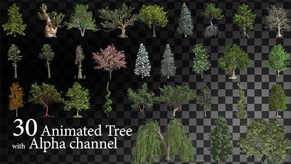 دانلود فوتیج موشن گرافیک متحرک درخت Animated Tree