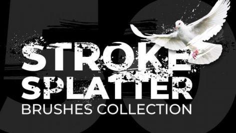 50 Brush Strokes Splatters 1