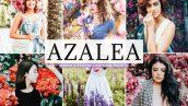 Azalea Lightroom Presets Pack 3