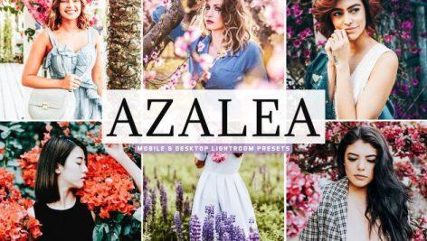 Azalea Lightroom Presets Pack 3