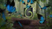 Butterfly Logo Opener