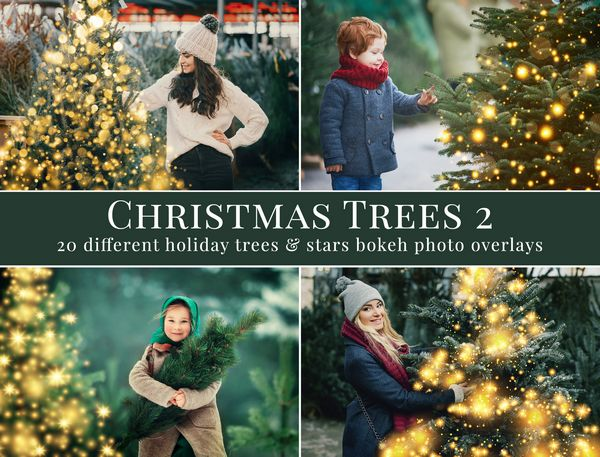 مجموعه درخت کریسمس با بوکه های نورانی Christmas Trees bokeh overlays